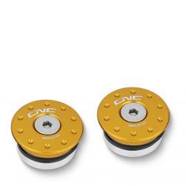 Заглушки оси маятника CNC RACING TT322G Gold для Ducati Panigale V4/899/955/959/1199/1299